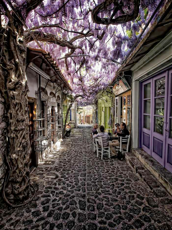 Flowery Streets - Molyvos, Lesbos, Greece