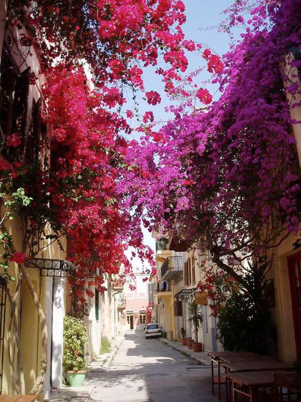 Flowery Streets - Nafplio, Greece