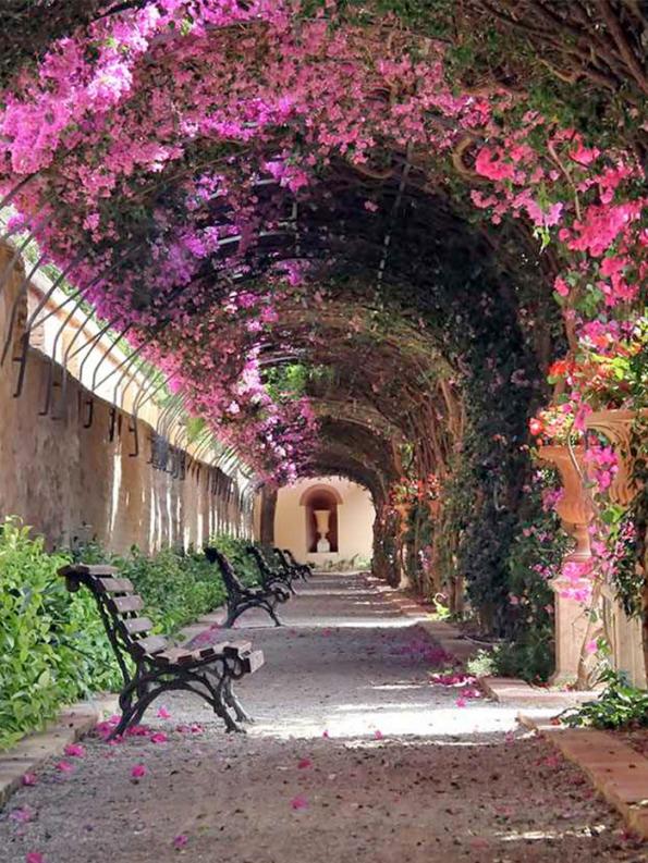 Flowery Streets - Valencia, Spain