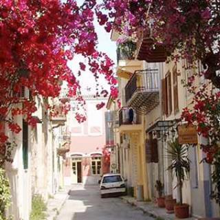 Flowery Streets Around the World