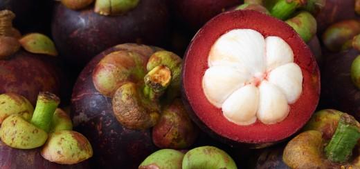 Mangosteen fruit health benefits